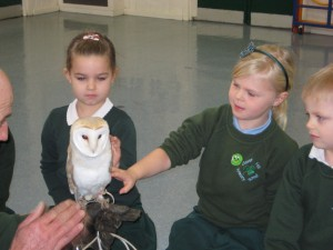 Owls visit Reception