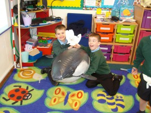 Year 1 have a visit from Orca