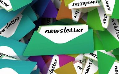 Friday Newsletter 13th October