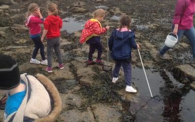 Year 1 trip to St Mary's Lighthouse