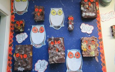 Reception Love Owls!