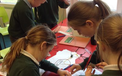Year 4 Science Week Activities