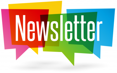 Reception Newsletter  – Summer 1