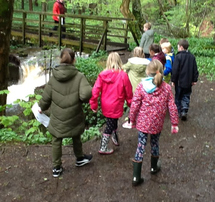 Year 5 residential: Orienteering for treasure…