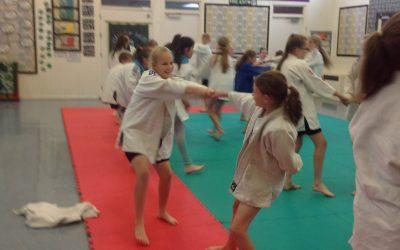 Judo -Taster Session